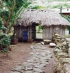 La madera como material de construcción en Casas Carbonell